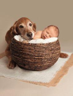 Cute diy newborn photography props ideas 26