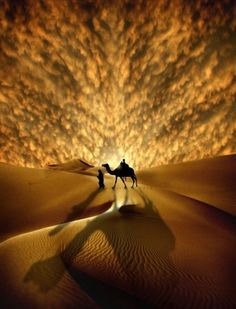.I know this is photo-shopped, but I just love it.  The golden sand with the golden lights in the sky is gorgeous!