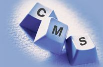 How Content Management System (CMS) Supports Your Business?