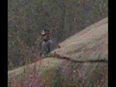 En los campos donde se llevó la batalla de Gettysburg, en Estados Unidos…