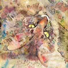 Kitty Fluffs by Marilyn Sholin