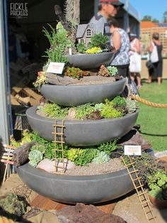 Succulent fountain display. Perth, Fountain, Succulents, Display, Garden, Outdoor Decor, Plants, Floor Space, Garten
