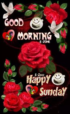Good Morning Coffee, Good Afternoon, Good Morning Beautiful Images, Morning Images, Happy Weekend, Happy Sunday, Sunday Morning Quotes, Sunday Greetings, Blessed Friday
