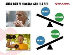 CellMaxx AFA