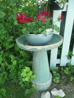 Planted colander on top of bird bath.