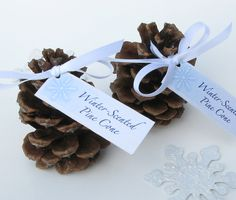 In a fall or winter wedding, pine cones can double as a place setting and wedding favor. Not bad for something that can be found in almost any backyard or park!