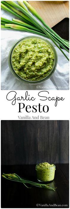 Creamy Vegan Garlic Scape Pesto | Vanilla And Bean
