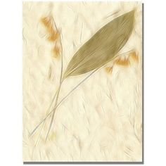 Trademark Art Lily of the Valley Canvas Art by Kathie McCurdy, Size: 24 x 32, Yellow