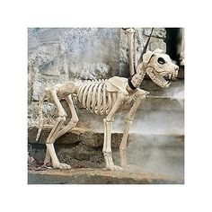 skeleton figure halloween prop bones skull walking dead zombie graveyard bone 5 dead zombie halloween and walking