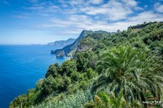 The view from Quinta do Furão in Santana on the north coast of Paradise... #Madeira island.