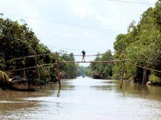 Monkey-Bridges The World's 15 Scariest Bridges that Will Freeze Your Heart