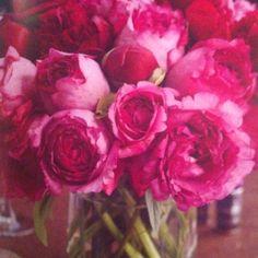 Monochromatic floral inspiration.