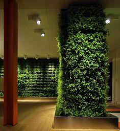 plant decoration - Buscar con Google