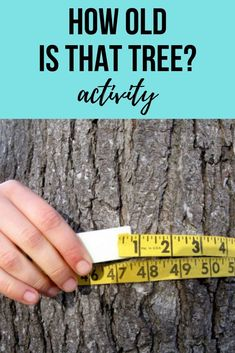 How Old is That Tree is part of Nature Science Preschool - Try this simple activity with your child to guesstimate the age of a tree in your yard and nurture her developing math skills while you're at it! Cool Science Experiments, Science Lessons, Life Science, Science And Nature, Science Week, Science Fair, Science Table, Physical Science, Earth Science