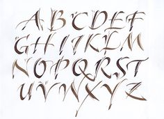 Decorative alphabet - http://www.mannyling.co.uk/images/calligraphy/DecorativeAlphabet.jpg