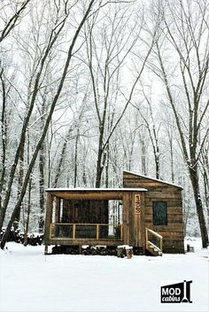 A cozy cabin in Asheville, with just 330 sq ft of space. Nestled in the woods and adjacent to Shope Creek, it's the perfect weekend getaway!