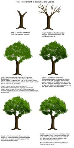 Tree tutorial Part 2 by ~Tephra76 on deviantART