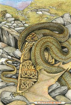 Cuelebre- Asturian and cantabrian myth: a winged serpent that lived in a cave…
