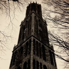 You can climb all 465 steps to get to the top of the Dom Toren in Utrecht. Utrecht, Travel Advice, Brooklyn Bridge, Climbing, Canning, Instagram Posts, Top, Mountaineering, Home Canning