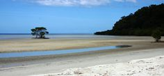 Cape Tribulation, north of Cairns and the Daintree River. It's a spectacular drive, (sealed road) surrounded by tropical rainforest and only a short trip out to the Great Barrier Reef. Complete with a couple of campgrounds, it's worth it. #capetribulation #campercairns