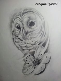 Owl,buho, draw,drawing,dibujo,sketch,book,design,diseño,art,realistic,portrait,realismo,