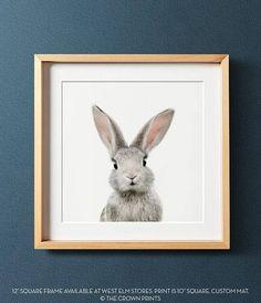 Bunny print PRINTABLE art Animal print Baby rabbit print
