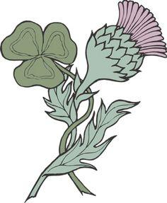 shamrock & thistle, representing Ireland & Scotland