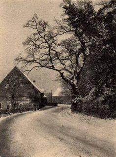 Das Waldhüterhaus am Sternwaldeck. Später Städt. Forsthaus an der Waldseestraße. Foto um 1900 https://www.facebook.com/HistorischesFreiburg/photos/np.1455606467335370.100002251567273/902695183154465/?type=3