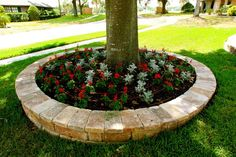 Love this around the big tree | Landscaping | Pinterest