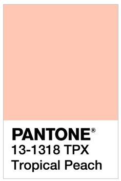 Pantone Pale Dogwood - and other spring 2017 colors Colour Pallette, Colour Schemes, Color Trends, Color Patterns, Color Combos, Pantone 2017 Colour, Pantone Colour Palettes, 2017 Colors, Pantone Swatches