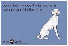 Trust your dog!! Bawahahaha!