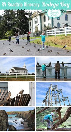 """RV road trip Northern California ideas: Bodega Bay, where the Alfred Hitchcock suspense thriller movie """"The Birds"""" takes place. This is a fun trip for the kids as well as the adults. Family fun for everyone!"""