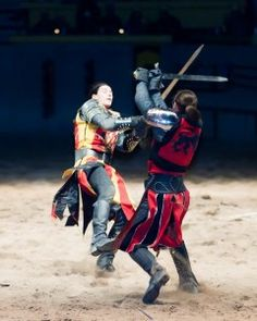 Experience Medieval Times Toronto Dinner & Tournament, Family Entertainment and learning along the way. Win Tickets, Downtown Toronto, Medieval Times, Gta, Giveaways, Renaissance, Places To Visit, Castle, Dinner