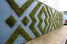 Resultado de imagem para planta graffiti