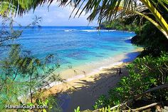 DONE honeymoon. Frightening descent into a pristine, secluded, tiny beach. Kauai Hawaii, Kauai Beach Resort, Myrtle Beach Resorts, Kauai Vacation, Vacation Resorts, Hawaii Travel, Beach Trip, Vacation Spots, Hawaii Life