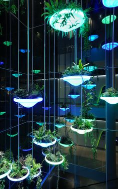 plants in the interior hybridizing with everyday objects. Casa Bunker, Vertical Gardens, Futuristic Design, Light Installation, Plant Design, Green Plants, Light Art, Outdoor Lighting, Sustainability