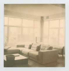 Taken with an SX70 and Impossible Film | Ann Street Studio