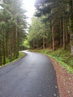 Frais, sombre et pluvieux, dans le faux plat descendant vers le Mont-Dore.