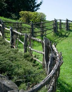 curves & personality w/this fence