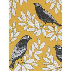 Buy Blue Jay MissPrint Songbird Wallpaper from our Wallpaper range at John Lewis & Partners. Free Delivery on orders over Kitchen Retro Wallpaper, Modern Wallpaper, Geometric Wallpaper, Wall Wallpaper, Designer Wallpaper, Mobile Wallpaper, Pattern Wallpaper, Bedroom Wallpaper, Wallpaper Designs