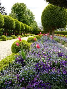 Topiaires, parterres de myosotis, pensées et tulipes, jardin formel devant l'Orangerie du Parc de Sceaux, Hauts-de-Seine