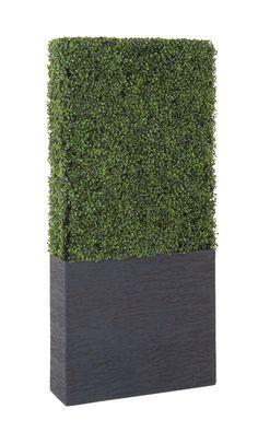 Boxwood Plant, Boxwood Hedge, Boxwood Topiary, Artificial Boxwood, Artificial Plants, Boxwood Landscaping, Modern Landscaping, Landscaping Ideas, Backyard Landscaping