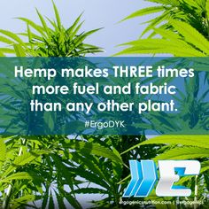 You can't argue with facts. Choose #hemp! #ErgoDYK