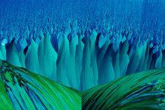 Resorcinal and methylene blue crystal   2015 Photomicrography Competition   Nikon's Small World