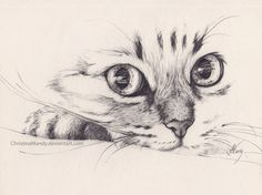 Cat Pencil Sketch Drawing - Imagen De Cat Pencil And Drawing Ideias Esboco Arte Animal Daily Sketch Walking Toward Me Animal Sketches Animal Drawings Cat Pencil Drawing By Wendy . Tumblr Drawings, Pencil Art, 2b Pencil, Drawing Sketches, Drawing Ideas, Drawing Tips, Sketching, Cat Sketch, Bird Sketch