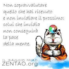 Chi invidia non ha pace - Il Saggio Miao Tao, Buddha, Disney Characters, Fictional Characters, Mindfulness, Wisdom, Fantasy Characters, Consciousness