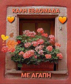Floral Wreath, Wreaths, Quotes, Decor, Quotations, Floral Crown, Decoration, Door Wreaths, Deco Mesh Wreaths