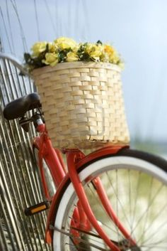 My dream: to have a red beach cruiser and take a ride to the ice cream shop with my honey.