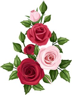 Hand painted roses PNG and Clipart Rose Clipart, Flower Clipart, Flower Bouquet Drawing, Flower Art, Beautiful Flowers Wallpapers, Beautiful Roses, Arte Floral, Floral Motif, Floral Design