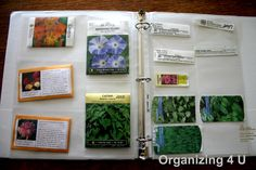 seed packet storage - Google Search